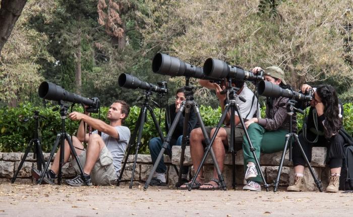 29. הוראת הצילום בעידןהדיגיטלי