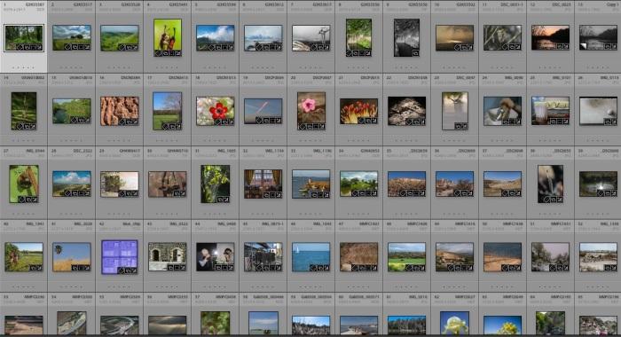 26. ״מארגן צילומים״, מקצוע חדש בתחוםהצילום?