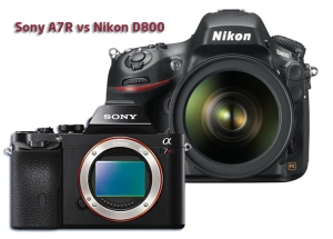 Sony_A7R_vs_Nikon_D800_167218_med1