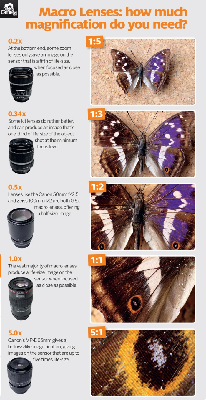 Macro_lenses_magnification_cheat_sheet