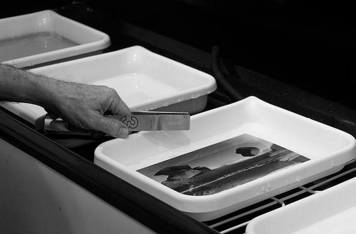 95. על סרטי צילום וניירות צילום, חלק ב: ניירות שחורלבן